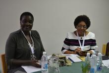 IATUL Directors' Summit 2017 - Delegates